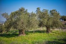Zippori National Park, Zippori, Israel