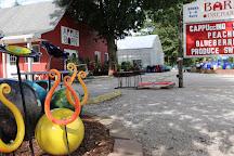 Apple Barn, Chatham, United States