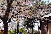 Iino-yama, Kagawa Prefecture, Japan