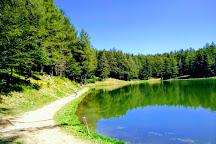 Adventure Park Cimone, Sestola, Italy