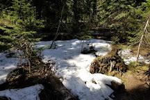 Silver Star Provincial Park, Vernon, Canada