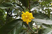 Jardin Botanico L'etoile Celeste, Katira, Costa Rica
