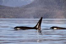 Juneau Tours, Juneau, United States