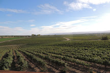 Hellams Vineyard, La Conner, United States