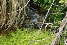 Devils River State Natural Area, Del Rio, United States
