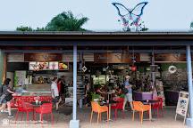 Butterfly Shop Kuranda, Kuranda, Australia