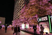 Shinjuku Southern Terrace, Shibuya, Japan