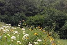 Bioparco dei Frignoli, Fivizzano, Italy