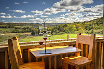Petoskey Farms Vineyard & Winery, Petoskey, United States