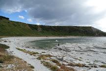 Ohau Point Seal Colony, Kaikoura, New Zealand
