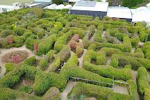The Tangled Maze, Creswick, Australia
