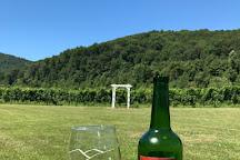 DuCard Vineyards, Etlan, United States