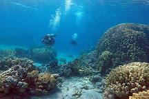 Aqaba Pro Divers, Aqaba, Jordan