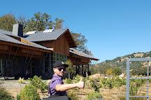 Brian Arden Winery, Calistoga, United States