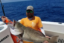 Bait House Charters, Clearwater, United States