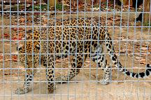 Hovatter's Wildlife Zoo, Kingwood, United States