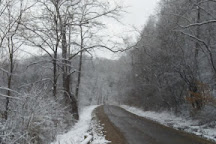 Wayne National Forest, Nelsonville, United States