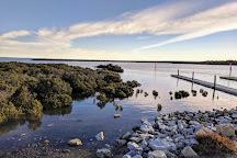 Woodlot Lane Nature Reserve, Tooradin, Australia