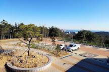 Ulsan Bridge Observatory, Ulsan, South Korea
