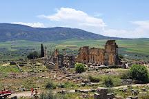 Archaeological Site of Volubilis, Meknes-Tafilalet Region, Morocco