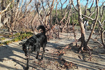 Bonita Beach Dog Park, Fort Myers Beach, United States