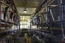 Ocheesee Creamery, Grand Ridge, United States