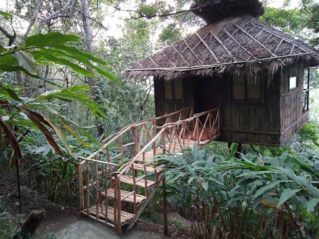 Vanya treehouse , Greenwoods Resort