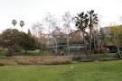 La Brea Tar Pits and Museum