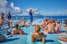 Compass Cruises, Cairns, Australia