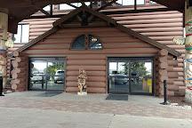 Great Wolf Lodge Water Park, Sandusky, United States