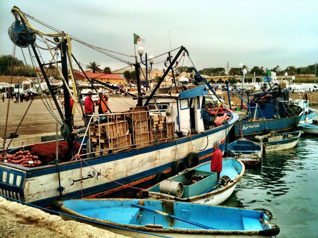 Port de Tipaza