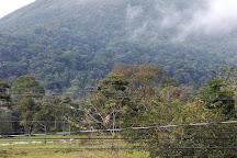 Pura Vida Tours, La Fortuna de San Carlos, Costa Rica