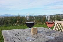 Omaha Bay Vineyard, Matakana, New Zealand