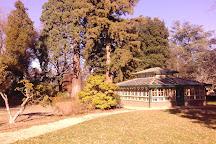 Cook Park, Orange, Australia