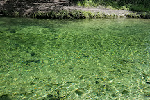 Lafayette Blue Springs State Park, Mayo, United States