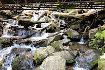 Mingo Falls, Cherokee, United States