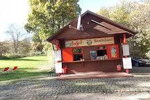 Feldmochinger See, Munich, Germany