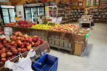 Woodbine Farm Market, Strasburg, United States