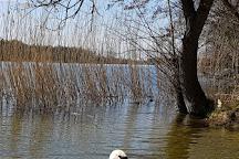 Jezioro Lusowskie, Lusowo, Poland