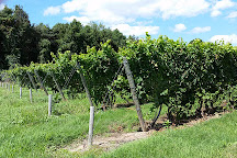 Fenn Valley Vineyards - Saugatuck Tasting Room, Saugatuck, United States