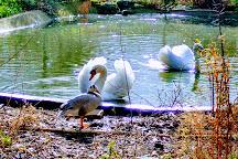il parco degli uccelli, Scano di Montiferro, Italy