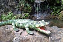 Parque Terra Magica Florybal, Canela, Brazil