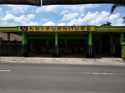 Ani Furniture