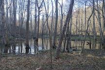 American Chestnut Land Trust, Prince Frederick, United States