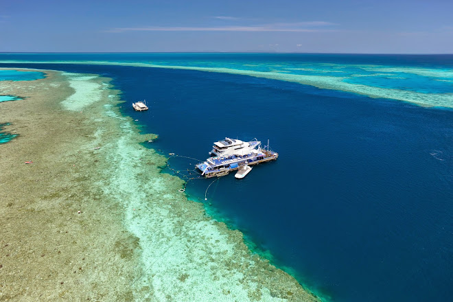 Visit Cruise Whitsundays on your trip to Airlie Beach or