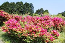 Himenosawa Park, Atami, Japan