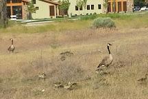 Kathryn Albertson Park, Boise, United States