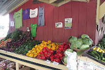 Pete's Stand Vegetables, Walpole, United States
