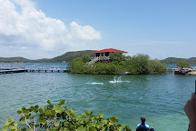Bahia de Naranjo Nature Park, Holguin, Cuba