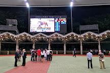 Singapore Turf Club, Singapore, Singapore